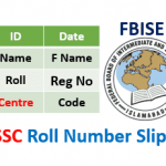 FBISE SSC Roll No Slip 2020