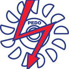 Pakhtunkhwa Energy Development Organization (PEDO)
