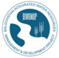 BIWRMDP