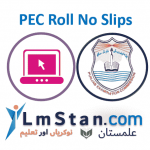 PEC Roll No Slip 2021 (5th and 8th Class) Download