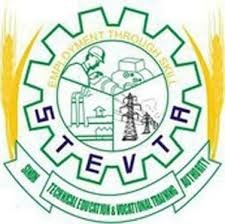 Sindh Technical Education and Vocational Training Authority (STEVTA)